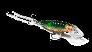 Shrimp 50